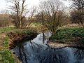 The River Dearne - geograph.org.uk - 380196.jpg