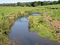 The River Otter - geograph.org.uk - 46439.jpg