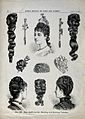 The heads of three women wearing chignons attached to their Wellcome V0019901.jpg