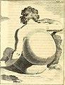 Theodori Kerckringii, Doctoris medici Opera omnia anatomica - continentia Specilegium anatomicum, Osteogeniam foetuum, nec non Anthropogeniae ichnographiam - accuratissimis figuris aeri incisis (14801489113).jpg