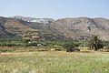 Tholaria, Amorgos, 080421.jpg