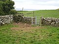 Three crossings in one corner of a field - geograph.org.uk - 1452210.jpg