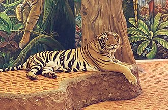 Sriracha Tiger Zoo - A tamed tiger at Sri Racha Tiger Zoo.