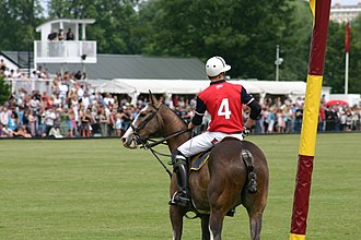 Ham Polo Club - Image: Toast New Zealand Day