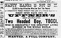 Tocci Zeitungsanzeige 1892.jpg