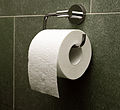 Toilet paper orientation over.jpg