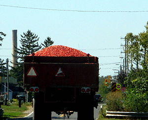 Leamington, Ontario - Tomatoes being transported in Leamington.  The smoke stack of the former Heinz processing factory can be seen in the distance.