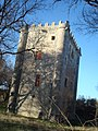 Torre de Olmosalbos (Revillaruiz) - 001 (35904412854).jpg