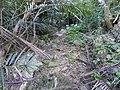 Trail of Mount Awa, Okinawa 05.jpg