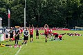 Training 1. Fc Köln (39532491292).jpg