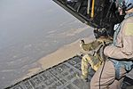 Training exercise 120730-F-BU402-027.jpg