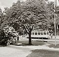 Tram Fortepan 83886.jpg