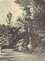 Triana Alenquer - GazetaCF 1154 1936.jpg