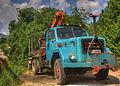 Truck in Bohinj.jpg