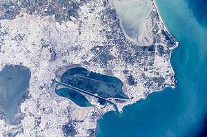 Satellite picture of Tunis