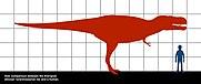Tyrannosaurus_rex-human_0505.JPG