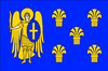 UKR Myronivka Raion flag.png