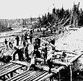 US Signal Corps 1943.jpg