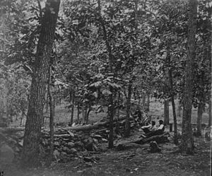 Culp's Hill - Union breastworks on Culp's Hill