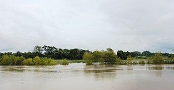 Usumacinta river floaded2020.jpg