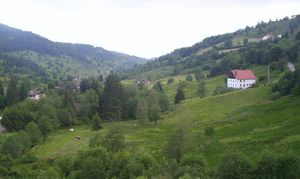 Vosges - Typical landscape of the Vosges (Chajoux valley, La Bresse, France)