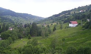 Chajoux valley, La Bresse (France)
