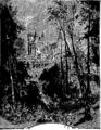 Verne - P'tit-bonhomme, Hetzel, 1906, Ill. page 238.png