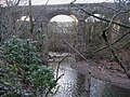 Viaduct over the Irwell - geograph.org.uk - 355581.jpg