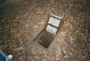 Secret passage - The camouflaged trap door, now open