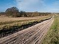 View across Salisbury Plain - geograph.org.uk - 302588.jpg