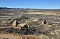 Vingerklip, Ugab Valley - Namibie - panoramio (5).jpg