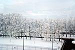 Walkway strip near Terminal D of Boryspil Airport.jpg