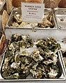 Warren Cove oysters - Boston, MA - 20180602 142347.jpg