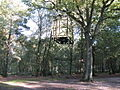 Water tower at Broadstone Warren - geograph.org.uk - 1535338.jpg