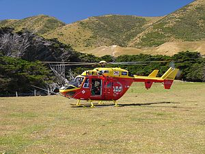 Wellington Westpac Rescue Helicopter - BK117 - Flickr - 111 Emergency (19).jpg