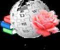 Wiki-ca-Sant Jordi.png