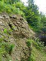 WikiProjekt Landstreicher Geotop Scheidegger Wasserfälle 11.jpg