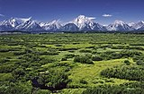 Willow Flats area and Teton Range in Grand Teton National Park.jpg