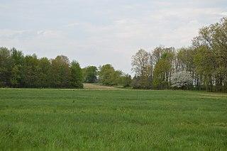 Cherry Township, Butler County, Pennsylvania Township in Pennsylvania, United States