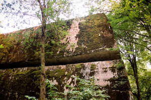 Wolf's Lair - Enormous amounts of explosives were used by the retreating Germans to blow up the Wolfsschanze bunkers. Here the explosion has lifted a bunker's roof, made of solid ferro-concrete two meters thick.