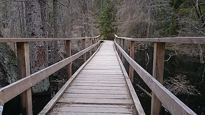 Wooden walkway - Tyresta.jpg
