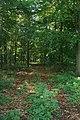 Woodland off Croxton Lane - geograph.org.uk - 999373.jpg