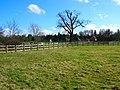 Woodmancote Place - geograph.org.uk - 145198.jpg