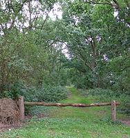 de meent woudenberg