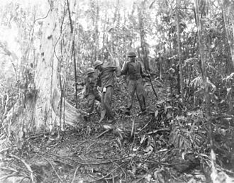 Battle of Mount Austen, the Galloping Horse, and the Sea Horse - A wounded United States Army soldier is assisted off of the line in the hills near the Matanikau River on 15 January 1943