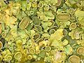 Xanthoria parietina-02.jpg