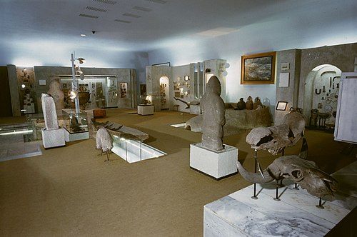 Museum Hall on Prehistoric times