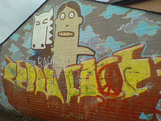 Kid Acne - Graffiti of Zebra Face, painted by Acne in Lutterworth.