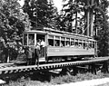 """Seeing Seattle"" streetcar of Seattle Electric Co, Woodland Park, Seattle (CURTIS 201).jpeg"