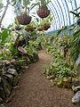 (Jardín Botánico de Quito) b3.JPG